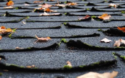 Watch for Signs You Need a New Roof