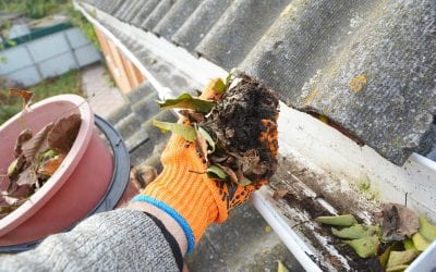 Home Maintenance: How to Clean Your Gutters